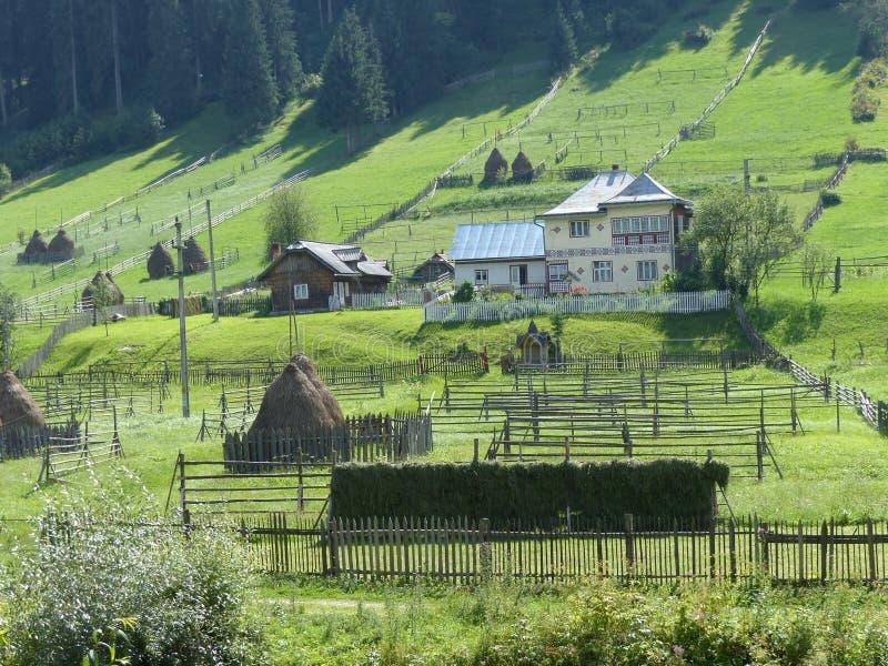 Panorama caractéristique des montagnes du Bucovine en Roumanie avec des champs, des chalets et des boules d'herbe de foin image stock