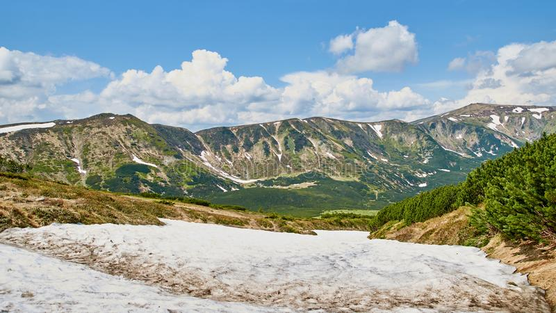 Panorama of Carpathian mountains in the summer with green hills and snow. Mountains landscape background royalty free stock photo