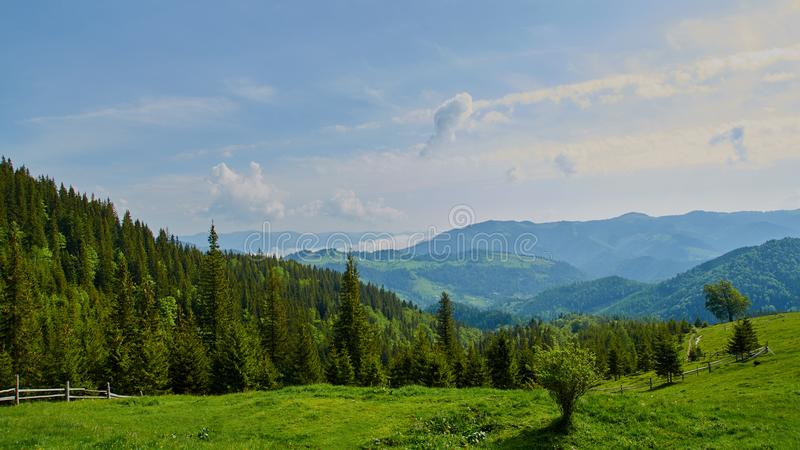 Panorama of Carpathian mountains in the summer morning stock photo