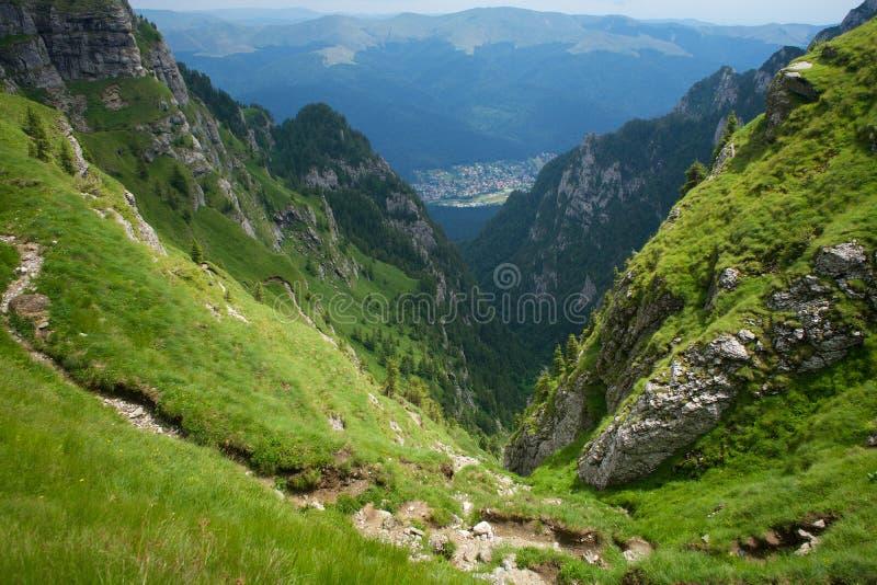 Panorama Carpathians för Bucegi bergdal i Rumänien royaltyfria foton