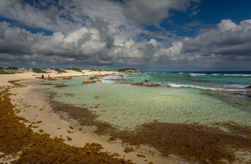 Panorama Chen Rio plaża w Cozumel, Meksyk zdjęcie stock