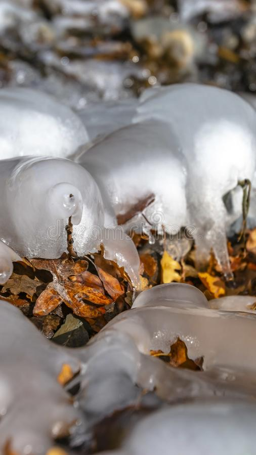 Panorama Close up of frozen water on a rocky stream with scattered fallen brown leaves stock images