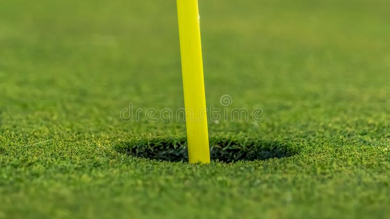 Panorama Close up view of the yellow pin and cup of a golf course on a sunny day royalty free stock photo