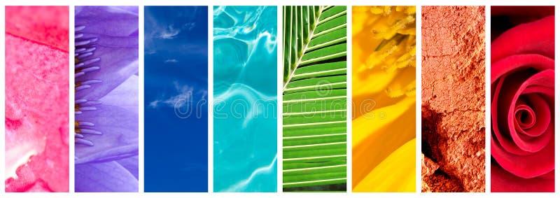 Panorama- collage för naturlig regnbågegradering, regnbåge i naturbegrepp stock illustrationer