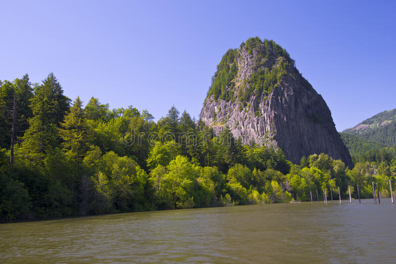 Panorama of the Columbia River with green river water with a light breeze, the wooded banks, the trees in the water, a huge and p. Owerful high cliffs, towering royalty free stock images
