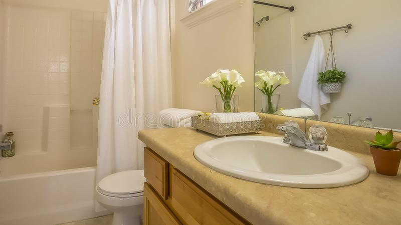 Panorama Cozy home bathroom interior decorated with lush green plants and white flowers. Vanity, toilet, bathtub, and shower can be seen inside the room royalty free stock image