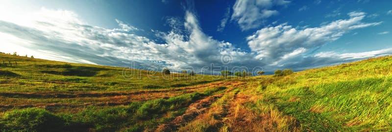 Panorama cucito Panorama di grande prato verde con erba, degli alberi nella distanza e di belle nuvole un giorno di estate solegg immagine stock libera da diritti