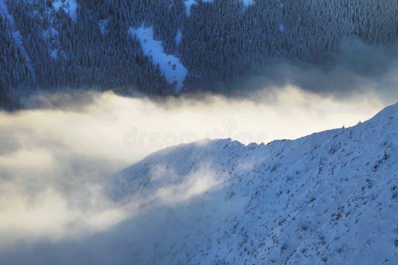 Panorama d'altezza della catena montuosa di Tatras di inverno con molti picchi e chiaro cielo da Belian Tatras Giorno soleggiato  immagini stock