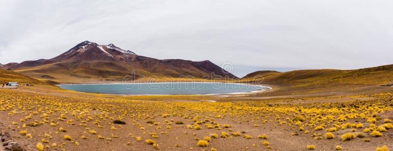 Panorama d'Atacama - Lagunas Altiplanicas images stock