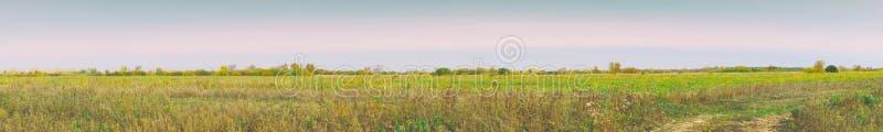 Panorama d'un grand pré d'automne le jour nuageux images stock