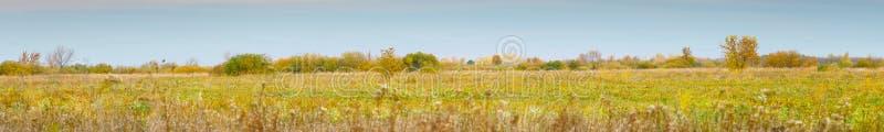 Panorama d'un grand pr? d'automne le jour nuageux image libre de droits