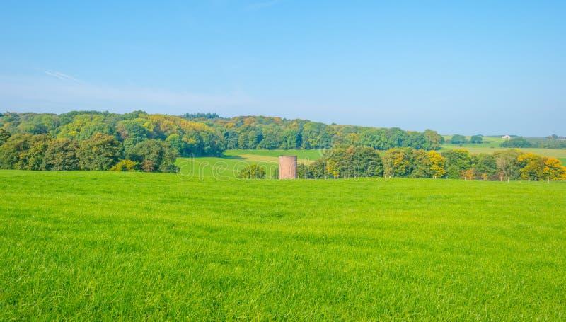 Panorama d'un pré vert sur une colline au soleil photos stock
