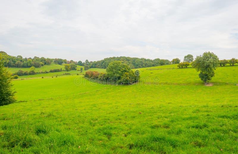 Panorama d'un pré vert sur une colline au soleil images libres de droits