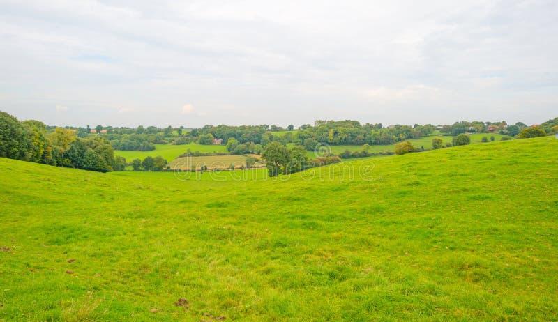 Panorama d'un pré vert sur une colline au soleil photographie stock