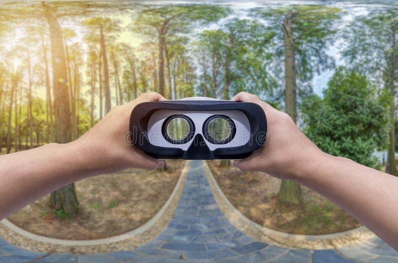 Panorama d'une forêt scénique d'arbres à feuilles caduques verts frais avec les verres de VR image stock