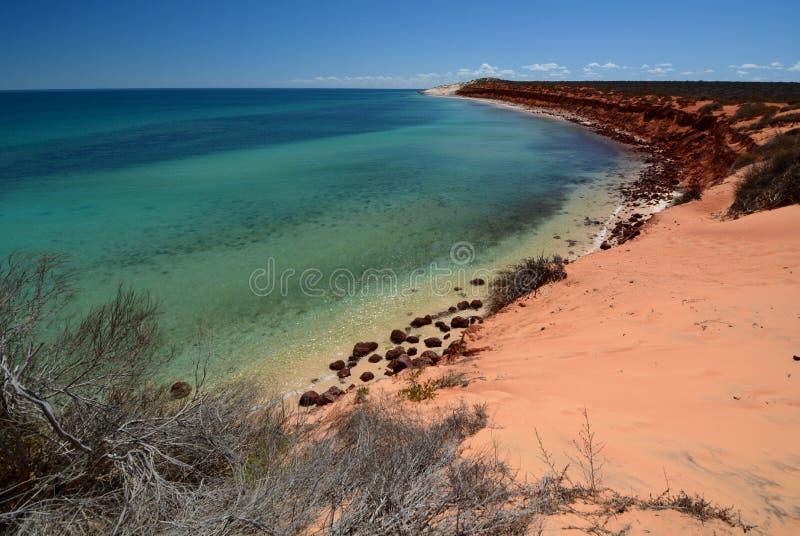 Panorama da baía da garrafa Parque nacional de François Peron Baía do tubarão Austrália Ocidental foto de stock royalty free