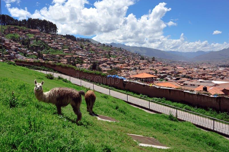 Download Panorama Da Cidade De Cuzco Imagem de Stock - Imagem de outdoors, após: 16852697