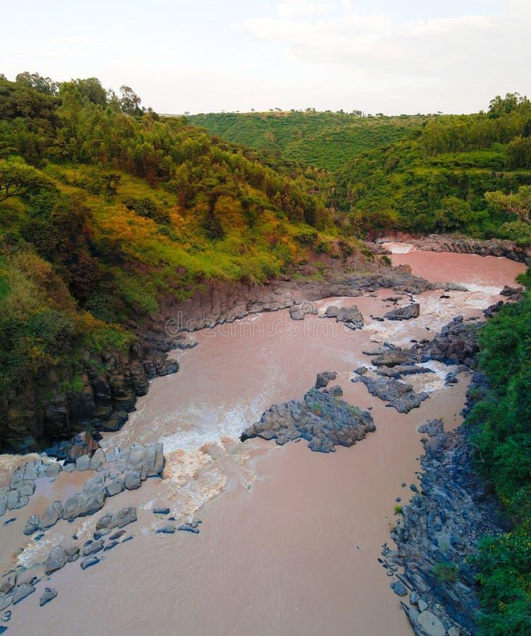 Panorama da corredeira no rio inundado, Etiópia imagem de stock royalty free