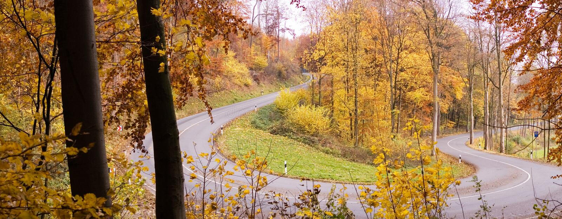 Panorama da estrada do outono imagens de stock