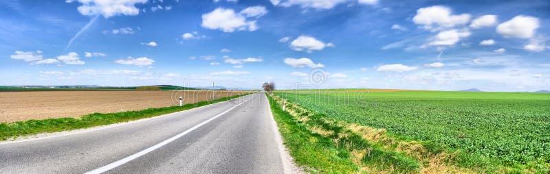Panorama da estrada, mola fotos de stock