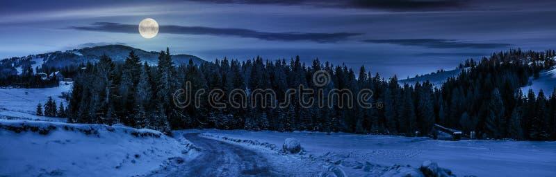 Panorama da estrada nevado através da floresta spruce nas montanhas no nig fotos de stock