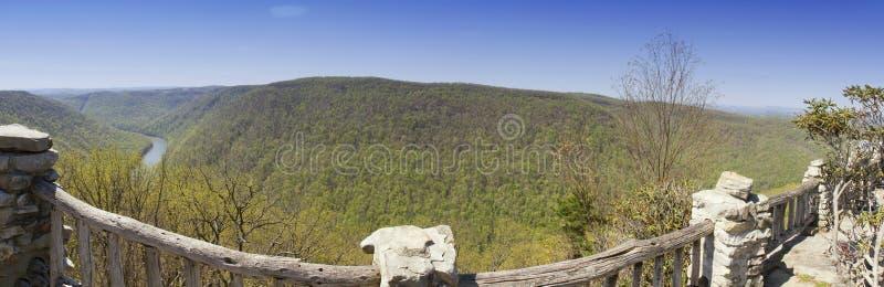 Panorama da floresta do estado da rocha dos tanoeiros foto de stock