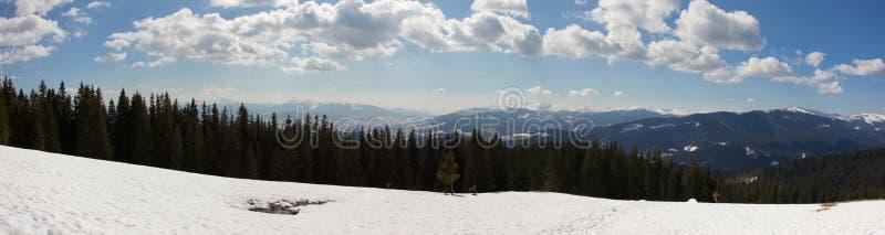 Panorama da floresta e das montanhas imagens de stock royalty free