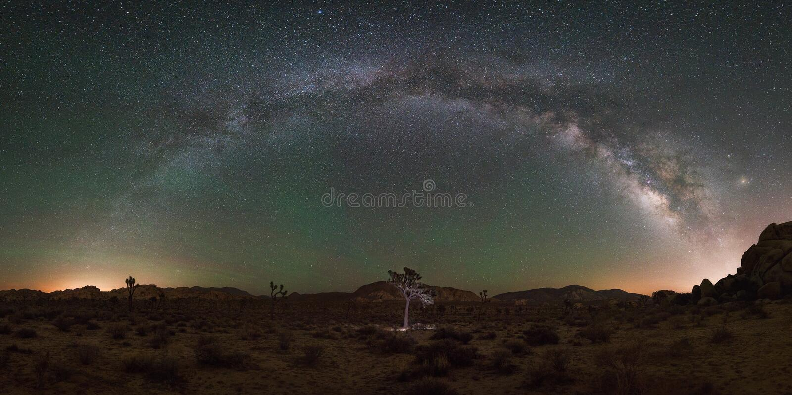 Panorama da maneira de Joshua Tree National Park Milky foto de stock royalty free