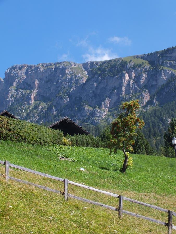 Panorama da montanha fotografia de stock