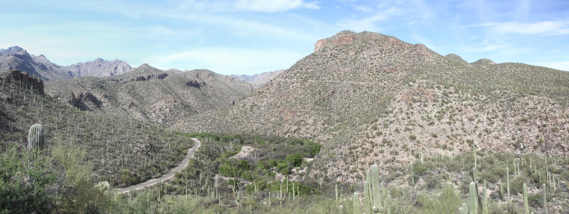 Panorama da montanha de Tucson imagem de stock