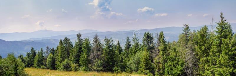 Panorama da natureza foto de stock royalty free