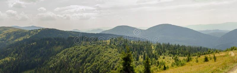 Panorama da natureza no verão fotografia de stock