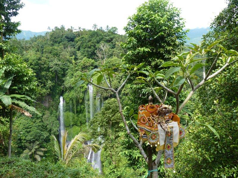 Panorama da paisagem da opinião da cachoeira de Bali, cachoeira de Sekumpul Ilha de Bali foto de stock