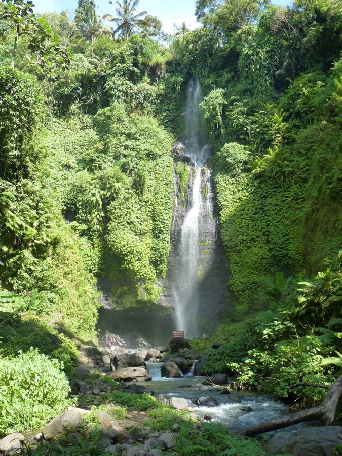 Panorama da paisagem da opinião da cachoeira de Bali, cachoeira de Sekumpul Ilha de Bali imagens de stock royalty free