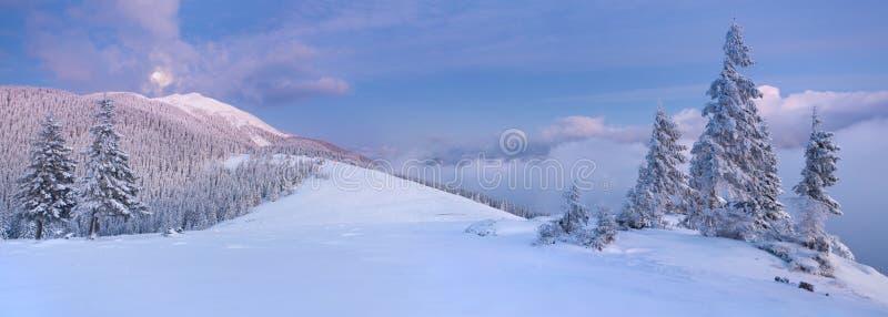 Panorama da paisagem do inverno imagens de stock