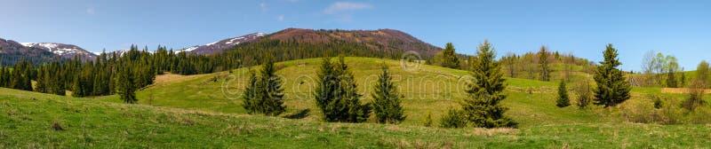 Panorama da paisagem montanhosa na primavera imagem de stock royalty free