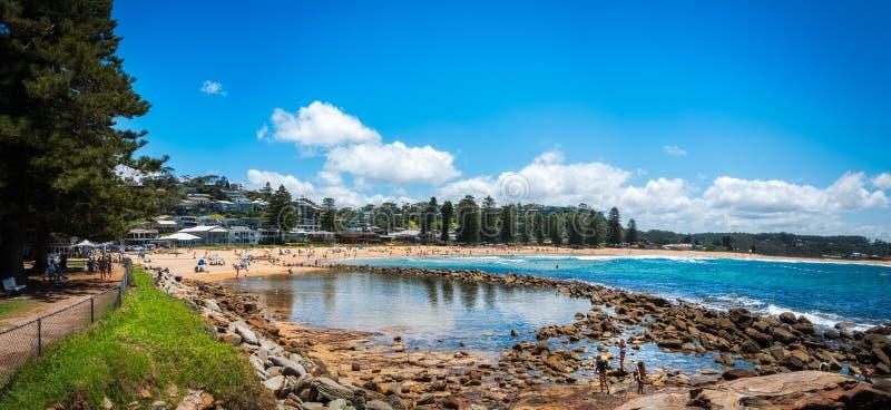 Panorama da praia de Avoca, NSW, Austrália fotografia de stock
