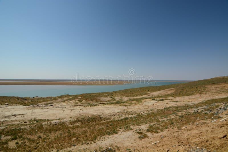 Panorama dal Amu Darya vicino ad Urganch uzbekistan fotografia stock