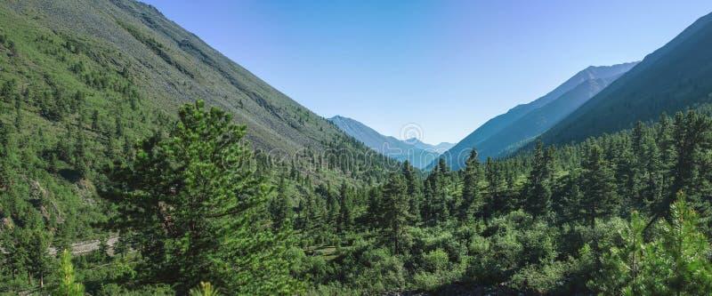 Panorama das montanhas cobertas com o céu verde e azul com nuvens Vista do vale imagens de stock