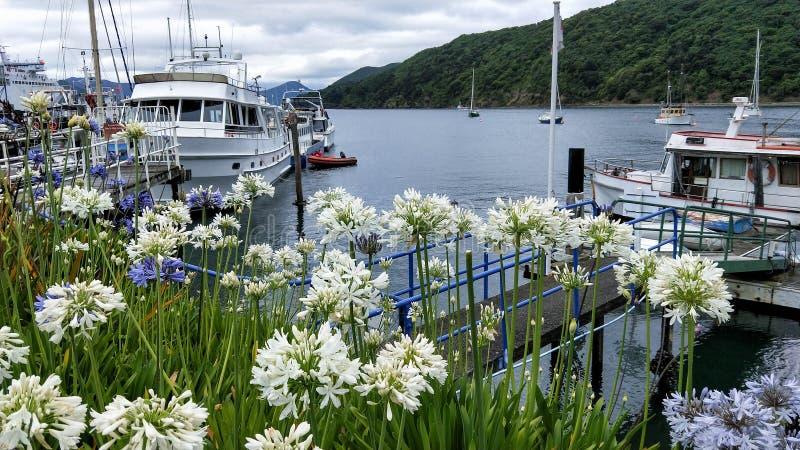 Panorama de barcos cênicos do som e de pesca da rainha Charlotte imagem de stock