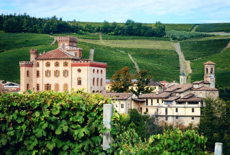 Panorama de Barolo piedmont, Itália imagens de stock royalty free