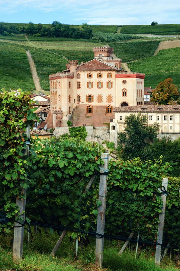 Panorama de Barolo piedmont, Itália imagem de stock royalty free