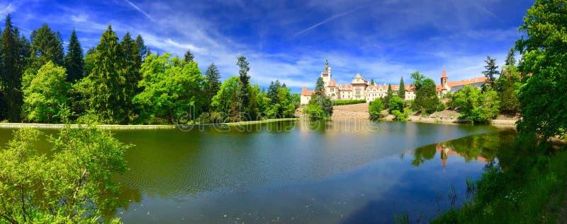 Panorama de beau château image libre de droits