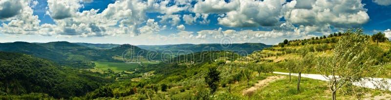 Panorama de beau Motovun et de côtes photographie stock libre de droits