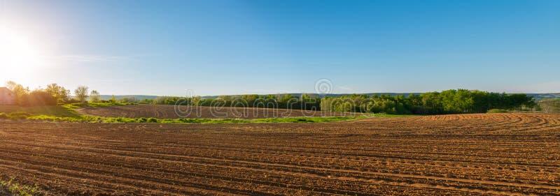 Panorama de champ agricole dans le printemps photo stock