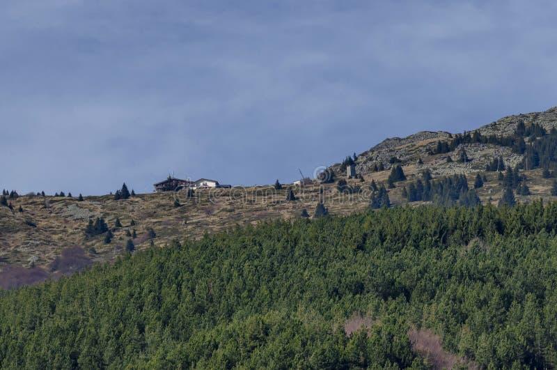 Panorama de clairière et de forêt en retard d'automne en montagne de Vitosha image stock