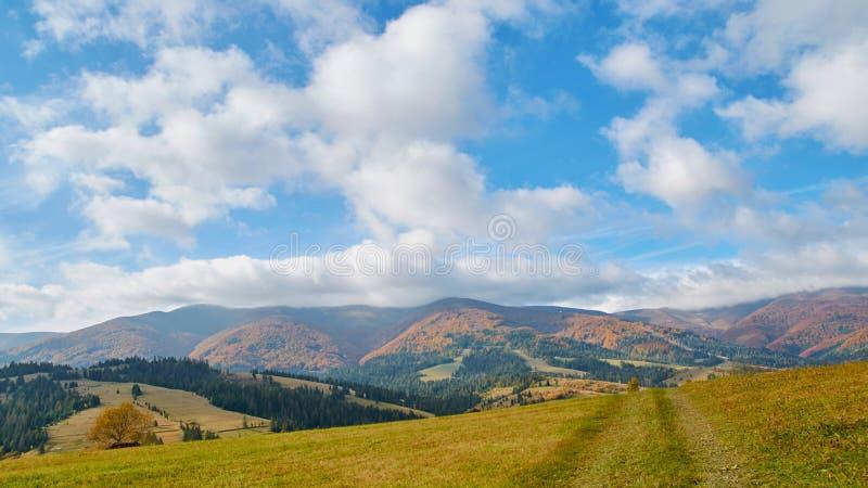 Panorama de colinas verdes, de árboles y de nubes asombrosas en montañas cárpatas en el otoño Fondo del paisaje de las montañas fotos de archivo