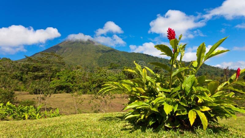 Panorama de Costa Rica imagens de stock royalty free