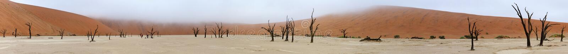 Panorama de Deadvlei imagen de archivo