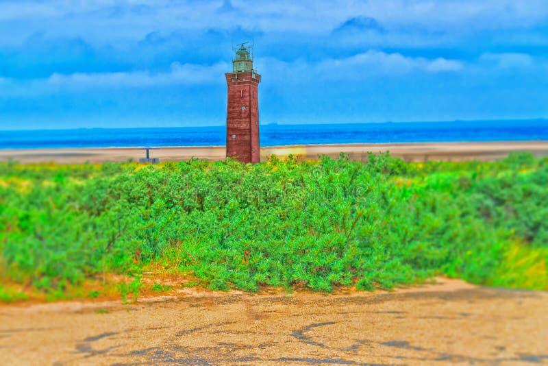 Panorama de dunes sur la côte de la Mer du Nord en Hollande illustration libre de droits